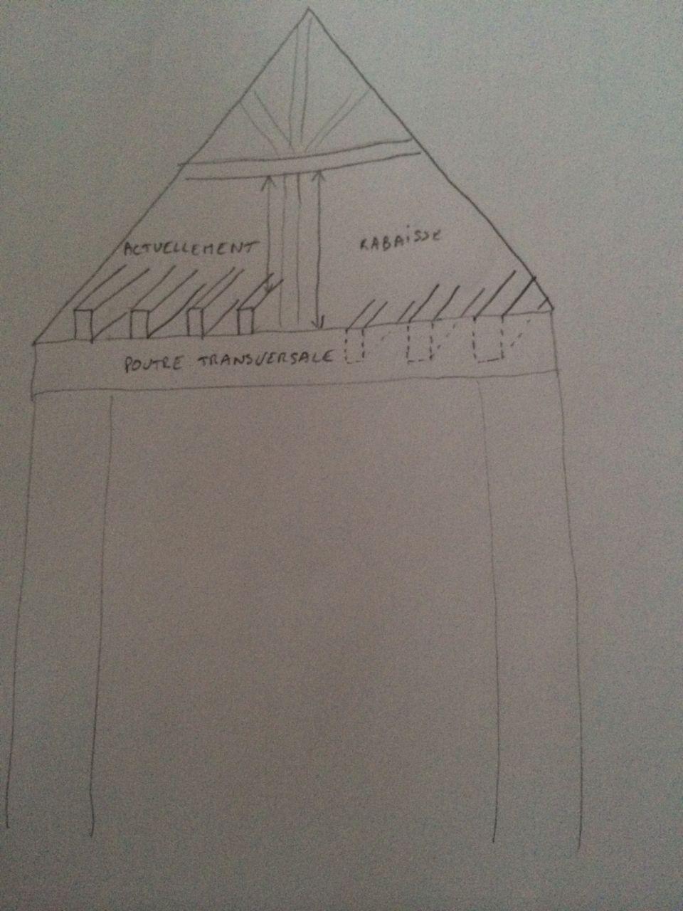 Voici le schéma pour rabaisser les poutres, il faut que je fixe des sabots sur les poutres transversales pour pouvoir y mettre les solives de 8x20... J'espère qu'avec ce schéma, c'est un peu plus clair.
