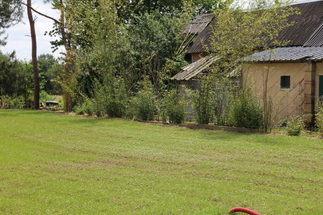 Une belle pelouse en pr paration vintage meuble m tallique roulage du terrain - Preparer son terrain avant pelouse ...