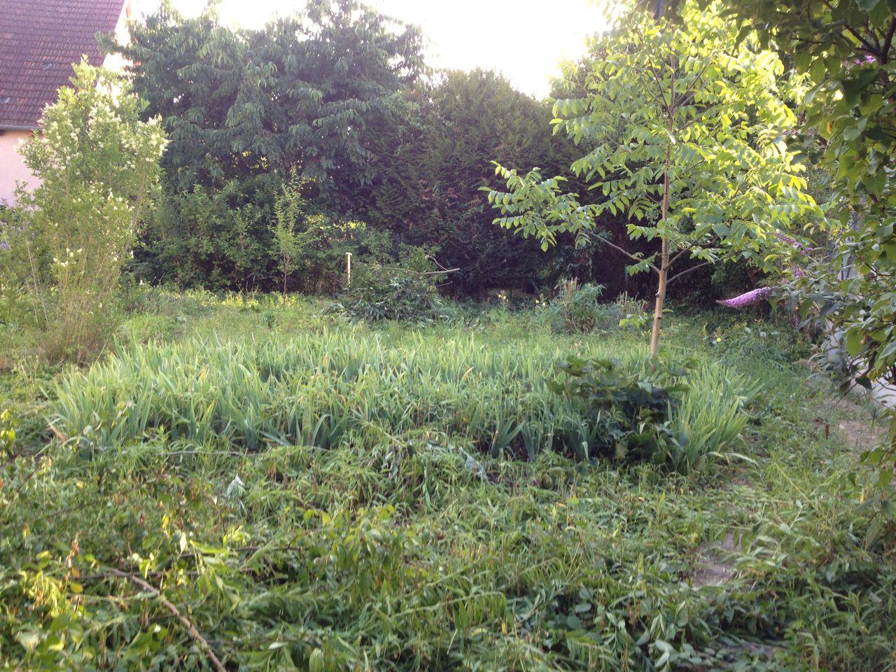 Le petit terrain de 260m2 est l'ancien jardin d'une maison des années 1950.