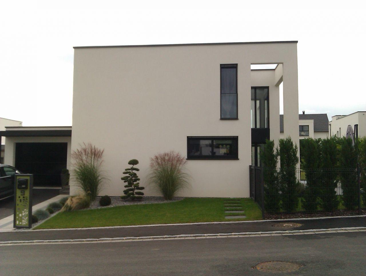 Arbre - Sierentz (Haut Rhin - 68) - octobre 2014