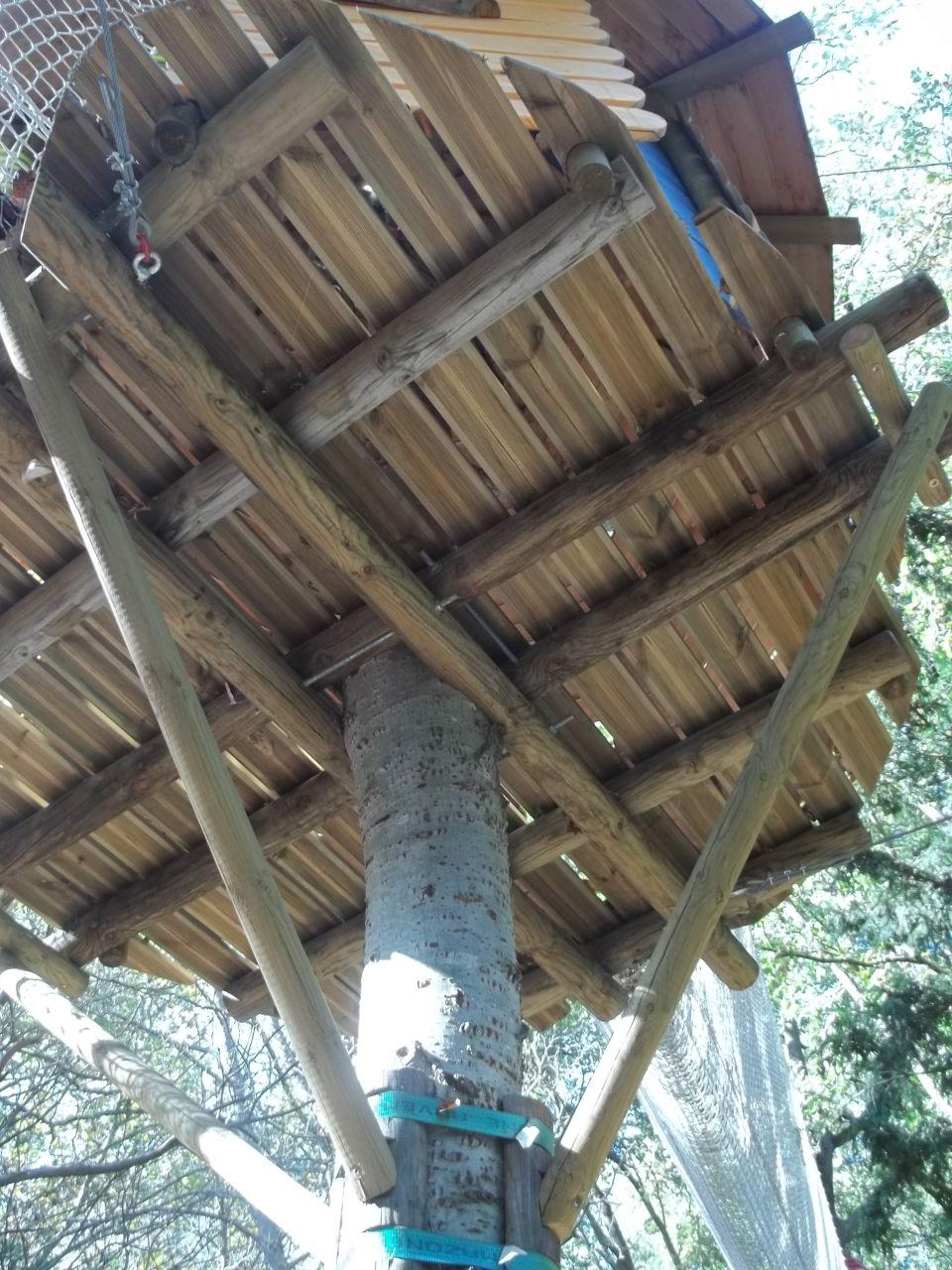 la cabane dans l 39 arbre belgentier var. Black Bedroom Furniture Sets. Home Design Ideas