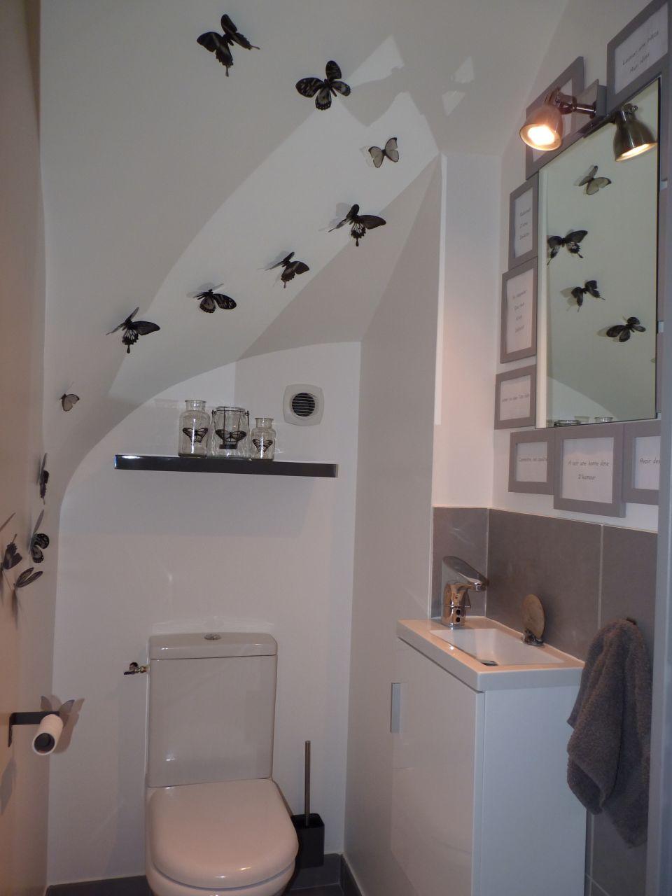 WC teintes murales grises - Savoie (73) - avril 2015