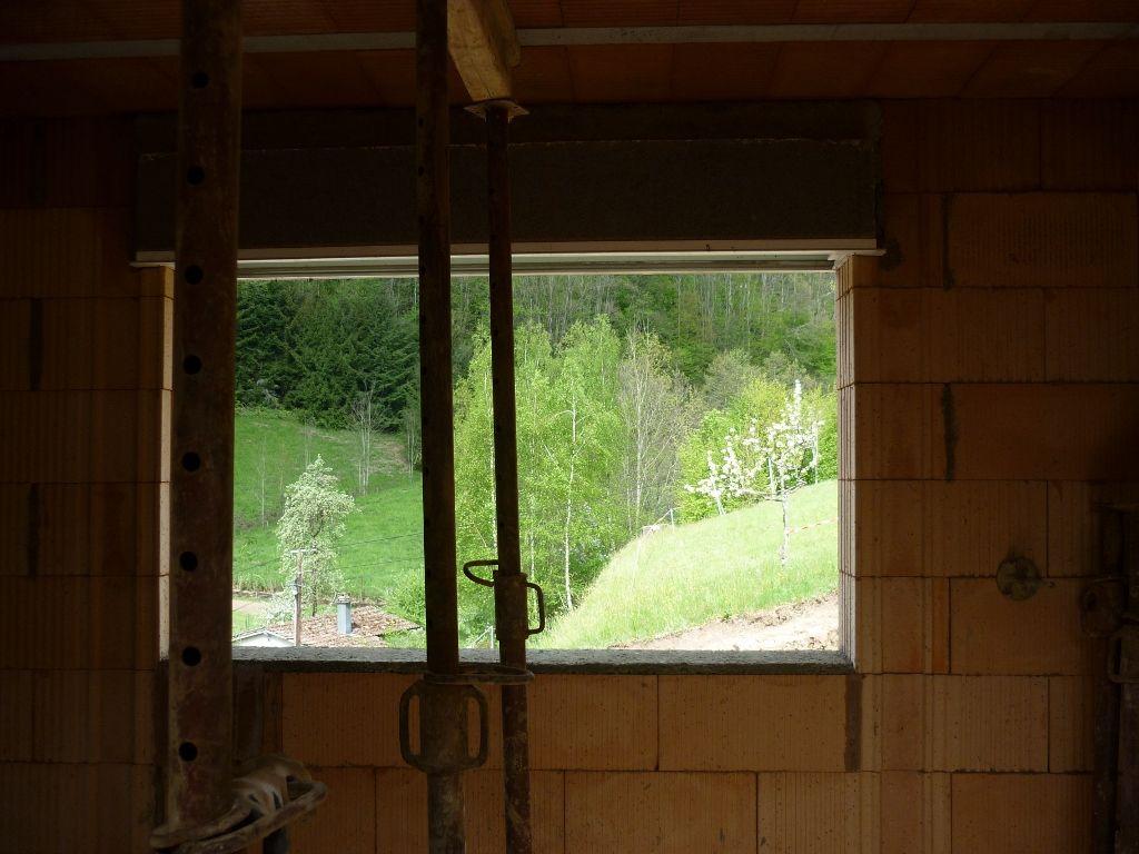 La vue par la fenêtre du salon (180X95)