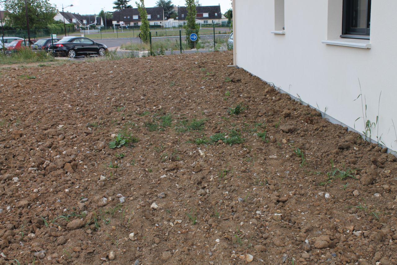 la terre est argileuse avec de gros silex, le jardinage va être dur!