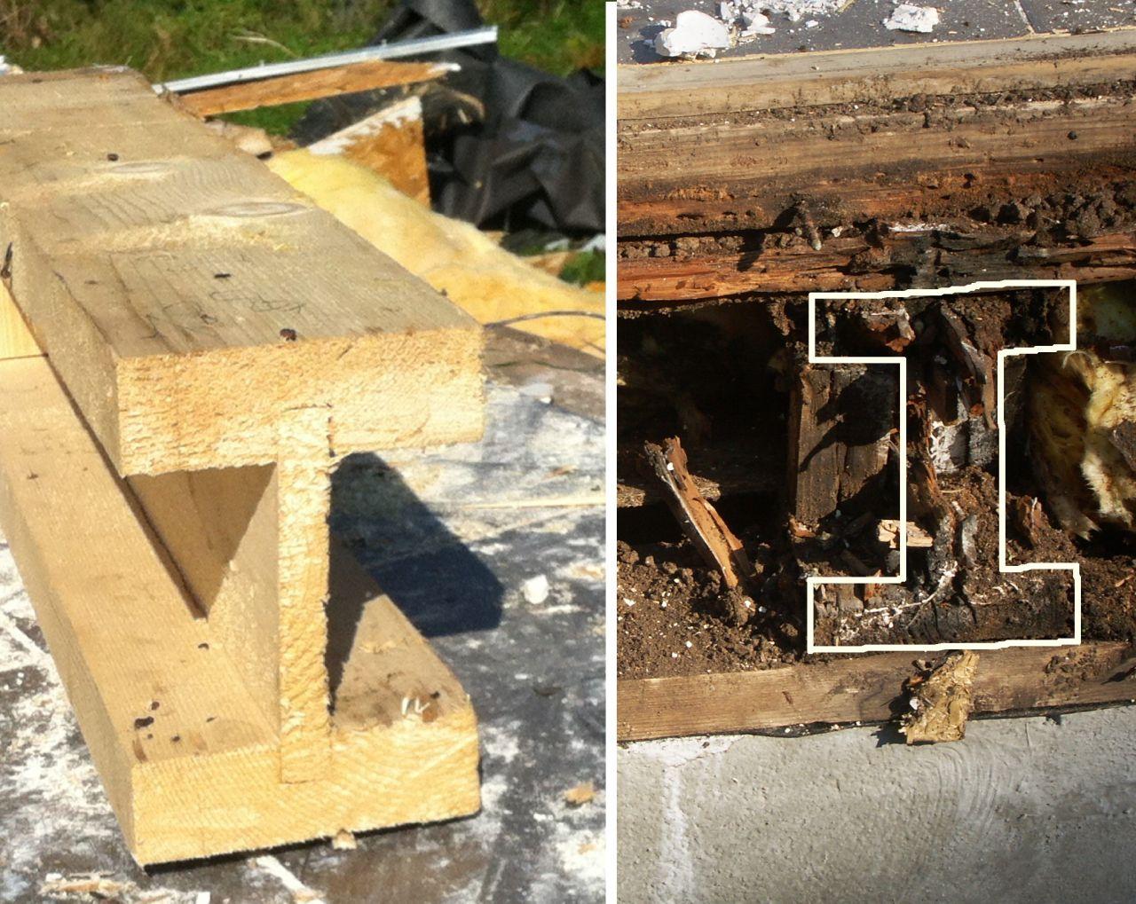 """les fameuses poutres en """"i"""", en bois non traité, assemblée par clou, et voila ce qu'il en reste après 30 mois en utilisation de plancher..."""
