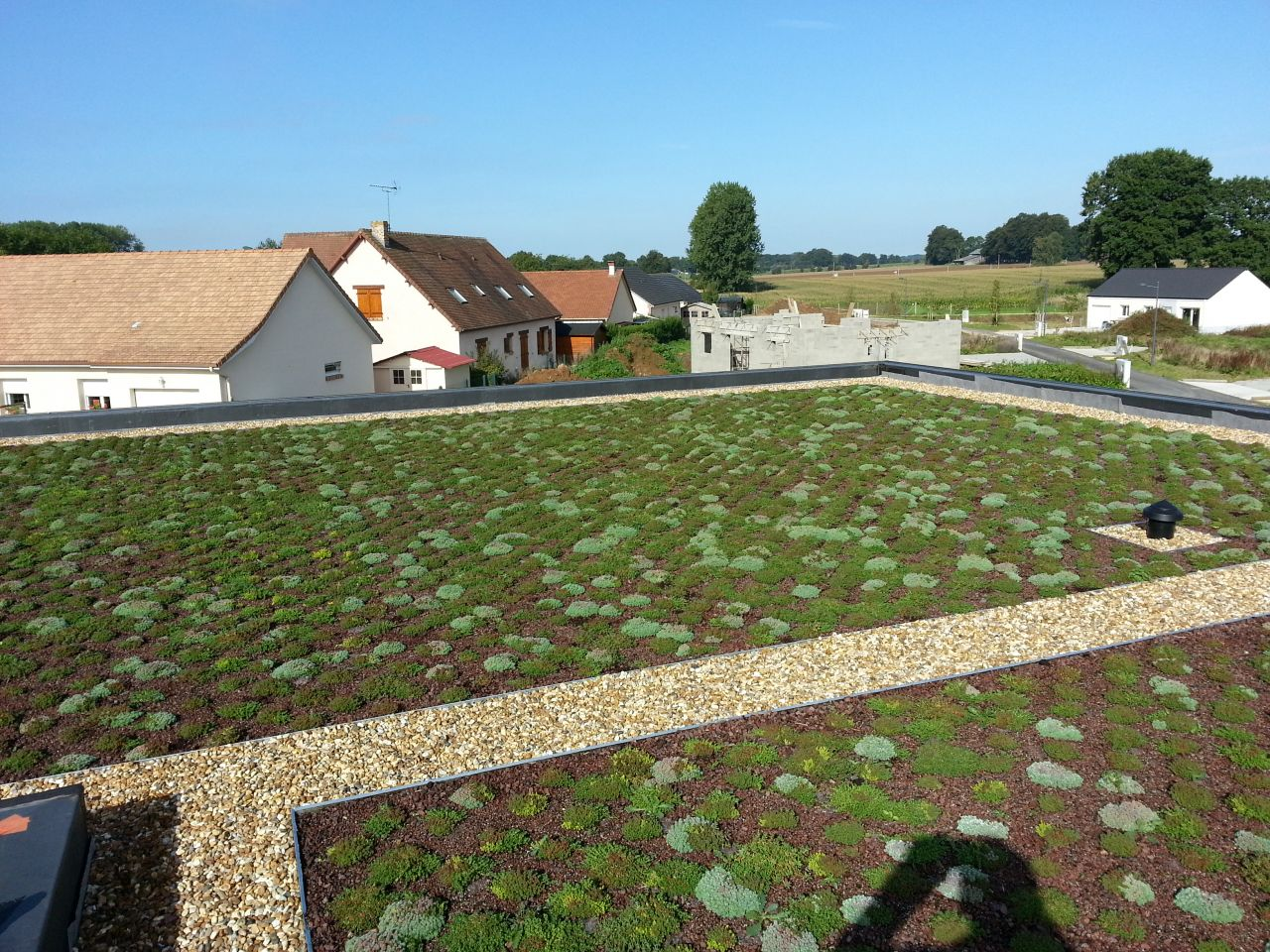 Toiture terrasse végétalisée étanchéité en EPDM (réalisation par nos soins)