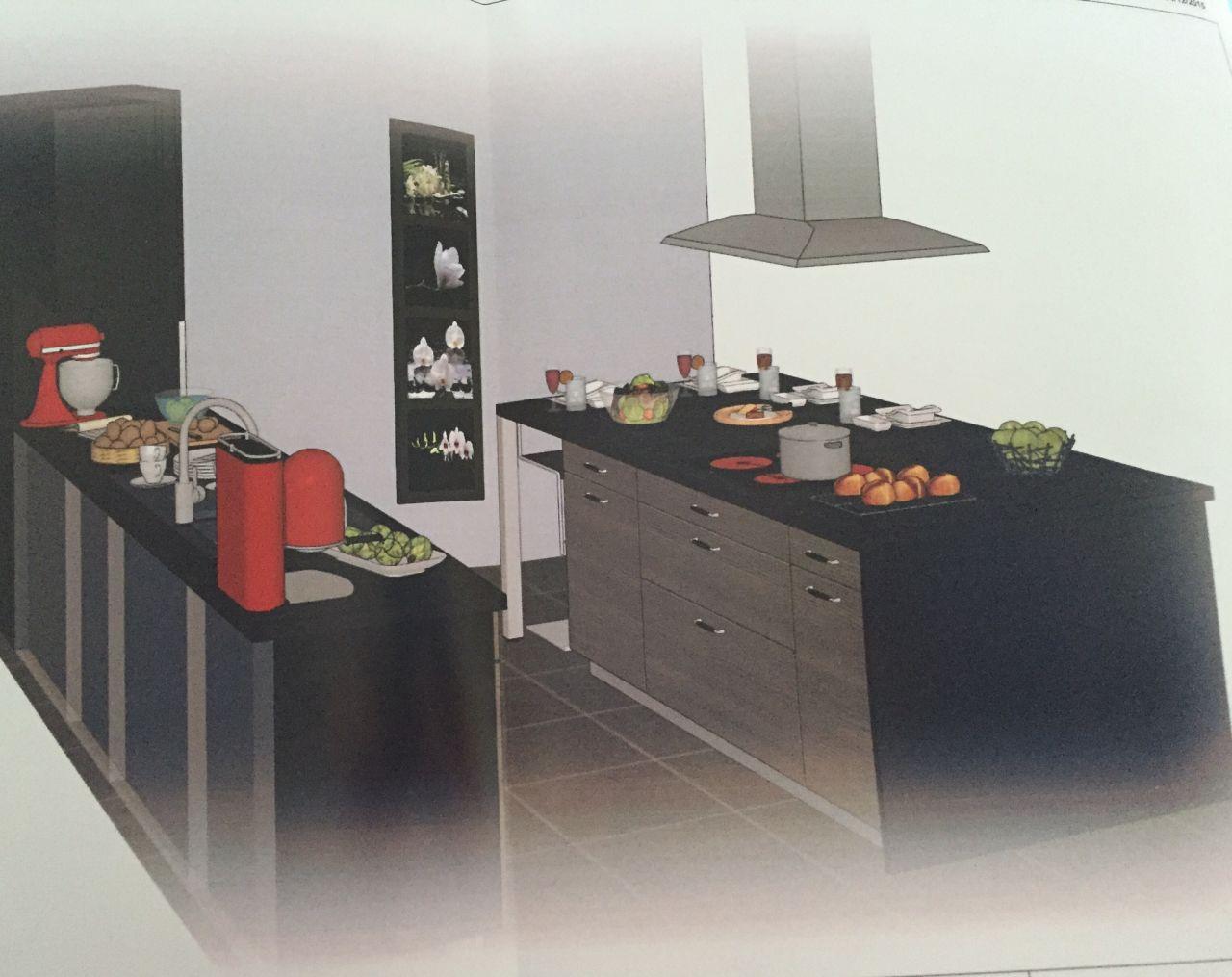 Plan 3D cuisine avec îlot central et intégration de notre frigo américain (photo un peu tordue car prise avec un téléphone portable) - Vue arrière