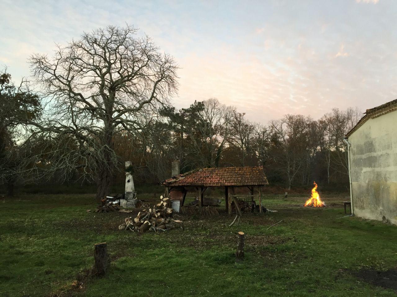 Déconstruction de la cabane n°2