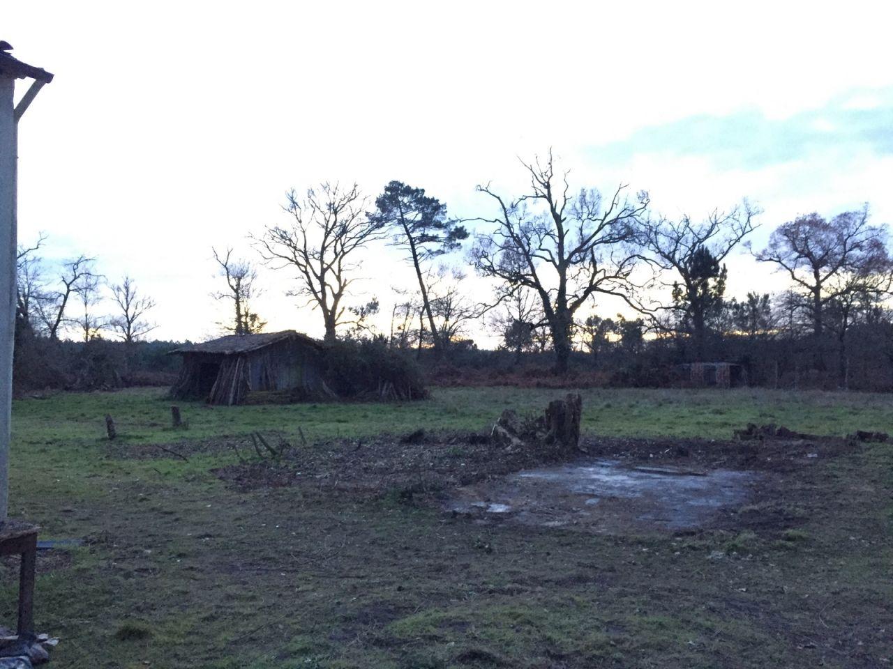Les vestiges de la cabane n°2