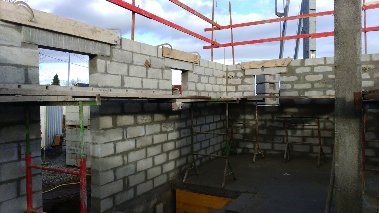 en 1er plan la porte d'entrée <br /> second plan fenetre des wc <br /> 3è plan fenetre de notre salle d'eau
