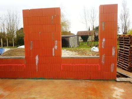 Murs de briques Calibric Max.