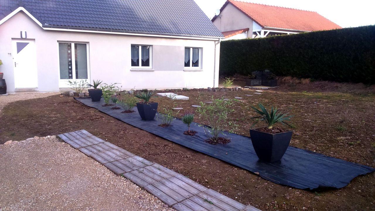 photo 3 yuccas saule crevette et lavande papillon v g taux plantation haies ardennes 8. Black Bedroom Furniture Sets. Home Design Ideas