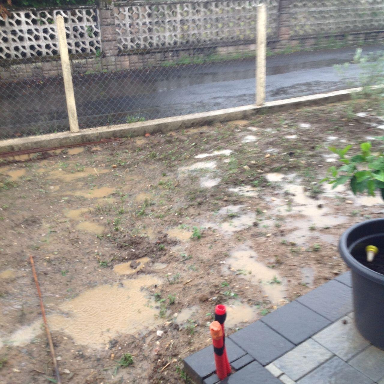 Notre petit jardin exotique st sulpice tarn - Petit jardin ru ...