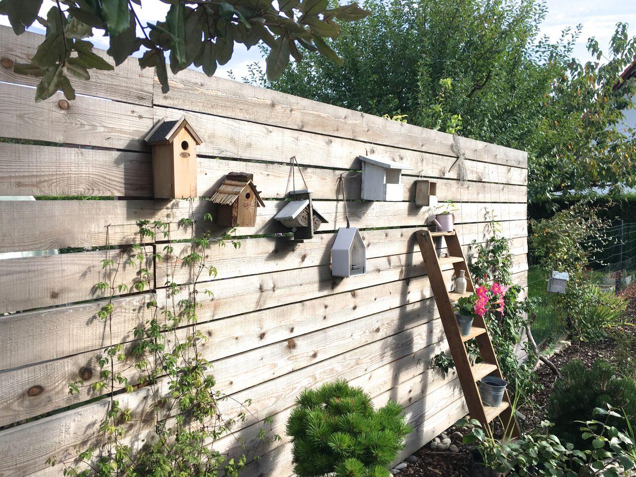 Début de collection de cabane à oiseaux