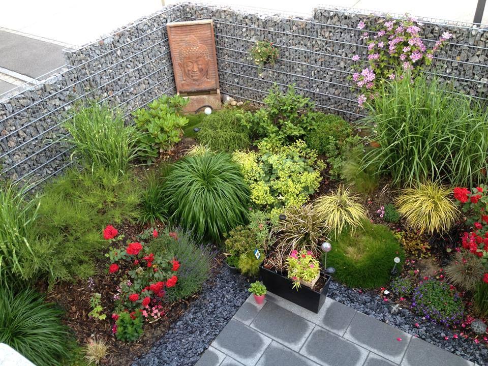 Notre jardin vu du ciel (ou plutot de la fenêtre de l'étage). - Et voila notre jungle en pleine floraison, en 2 ans, cela a pris du volume et beaucoup ...
