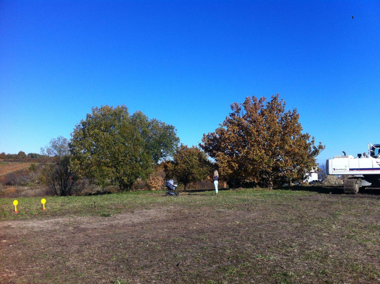 ici une Photo de l'automne dernier, le terrain fait 530m². <br /> On aurait aimé un peu plus grand mais bon question de budget on a choisi un terrain a peu près plat et dans notre budget  <br /> On peut y voir 2 arbres que nous allons devoir Abattre.
