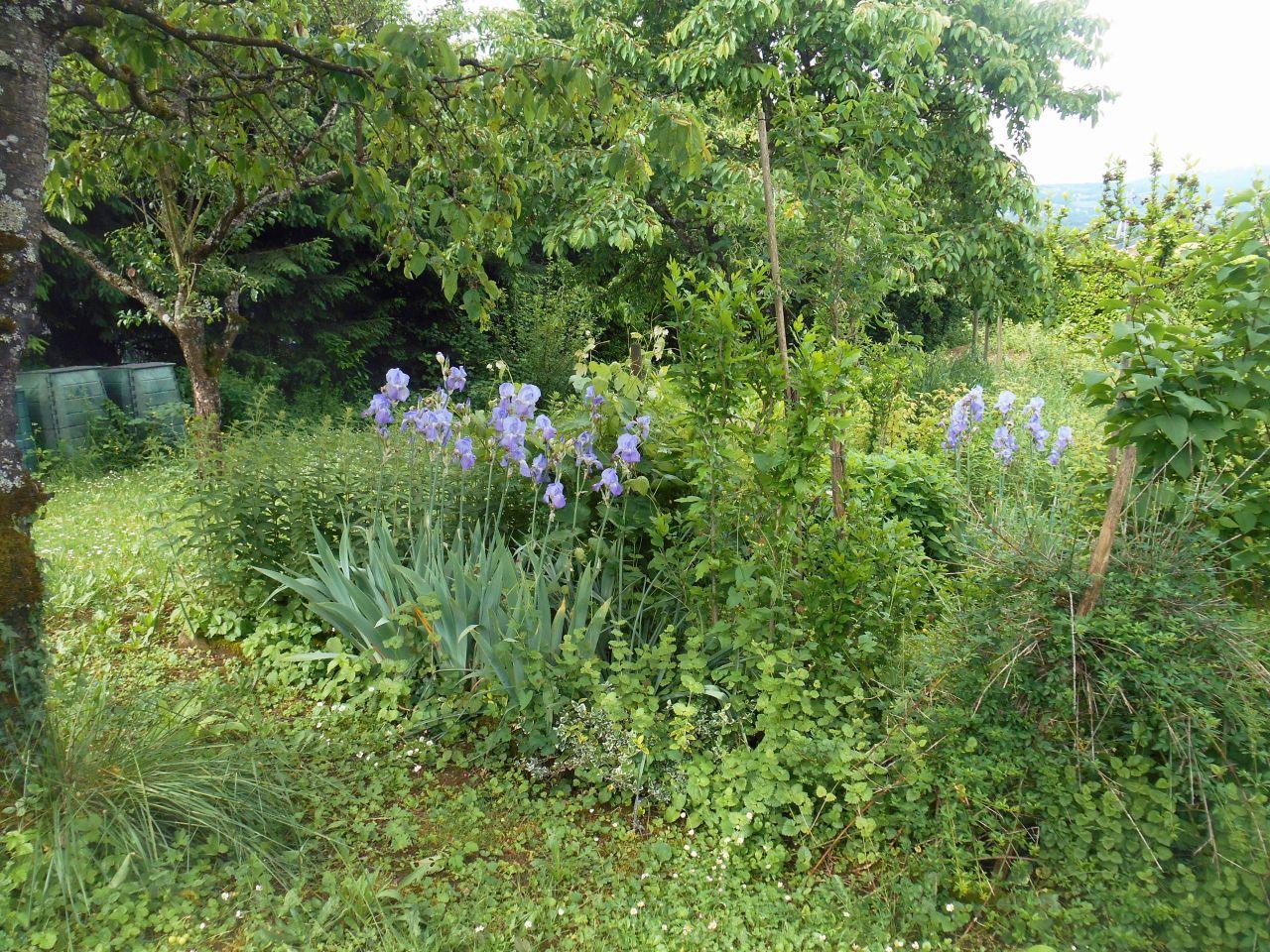 R verie au jardin haute savoie for Au coin du jardin montville