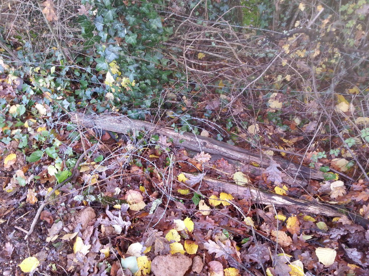 clôture à refaire