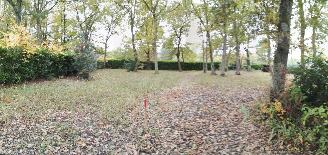 petite photo panoramique du terrain, avec pleins d'arbres... à abattre !