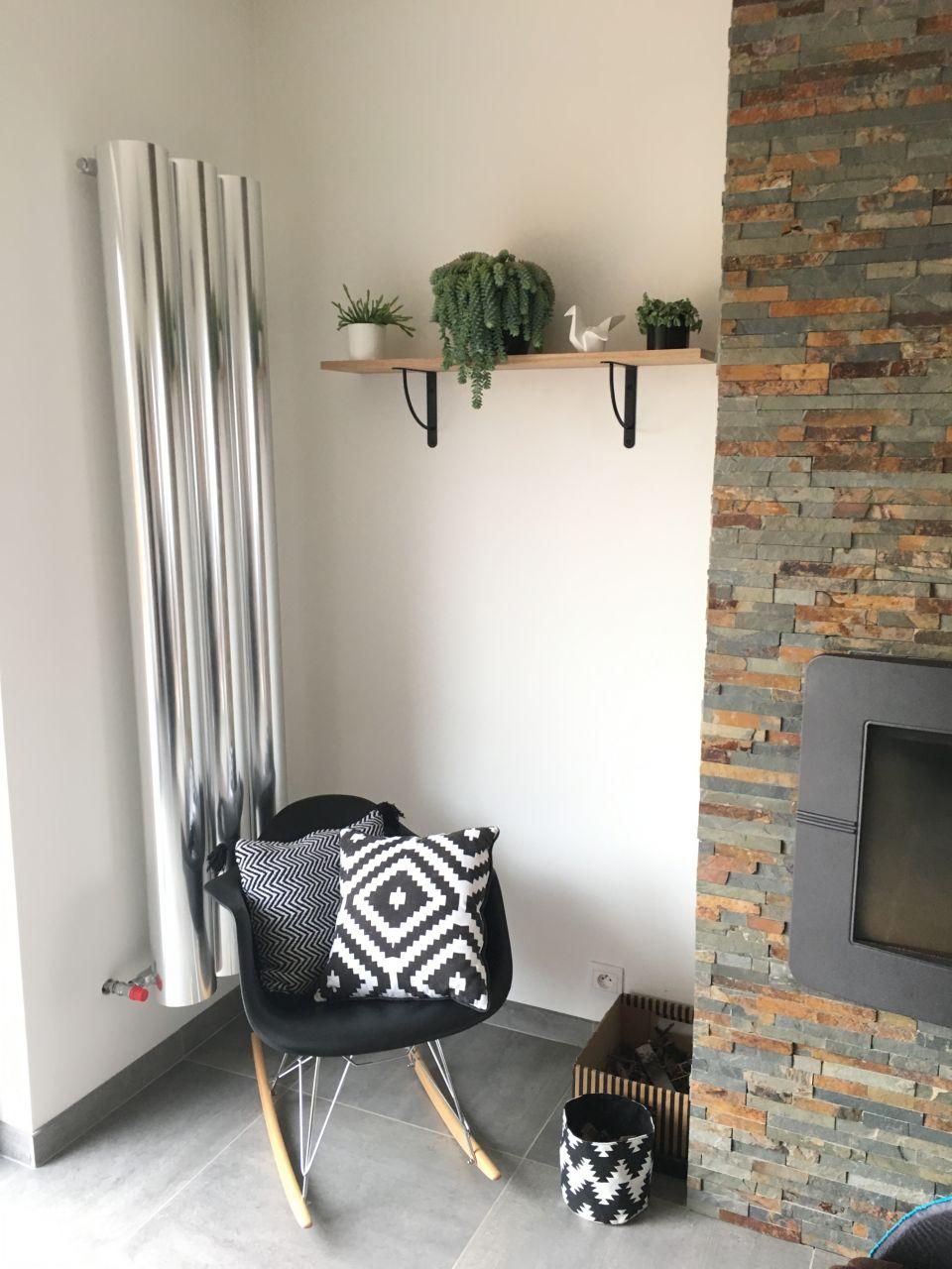 Etagère du salon avec plante tombante