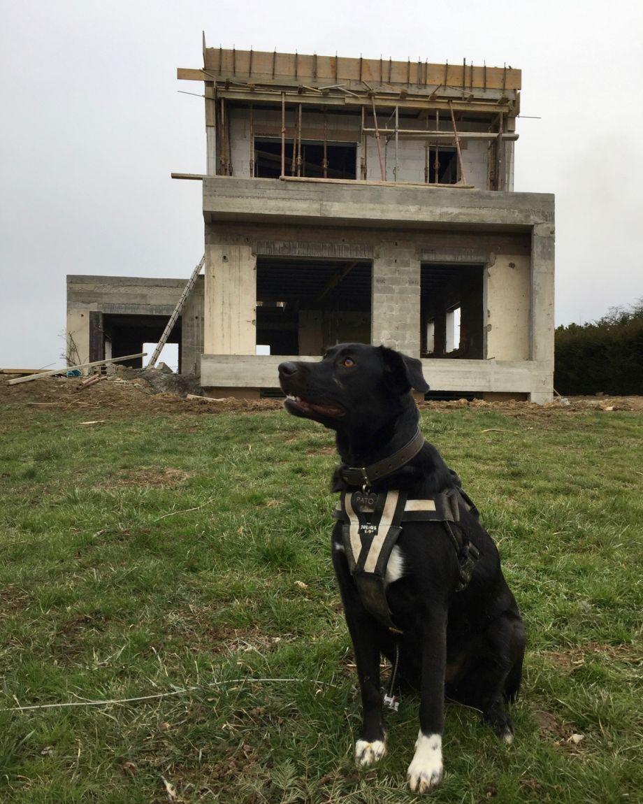 Forme de la maison définitive!