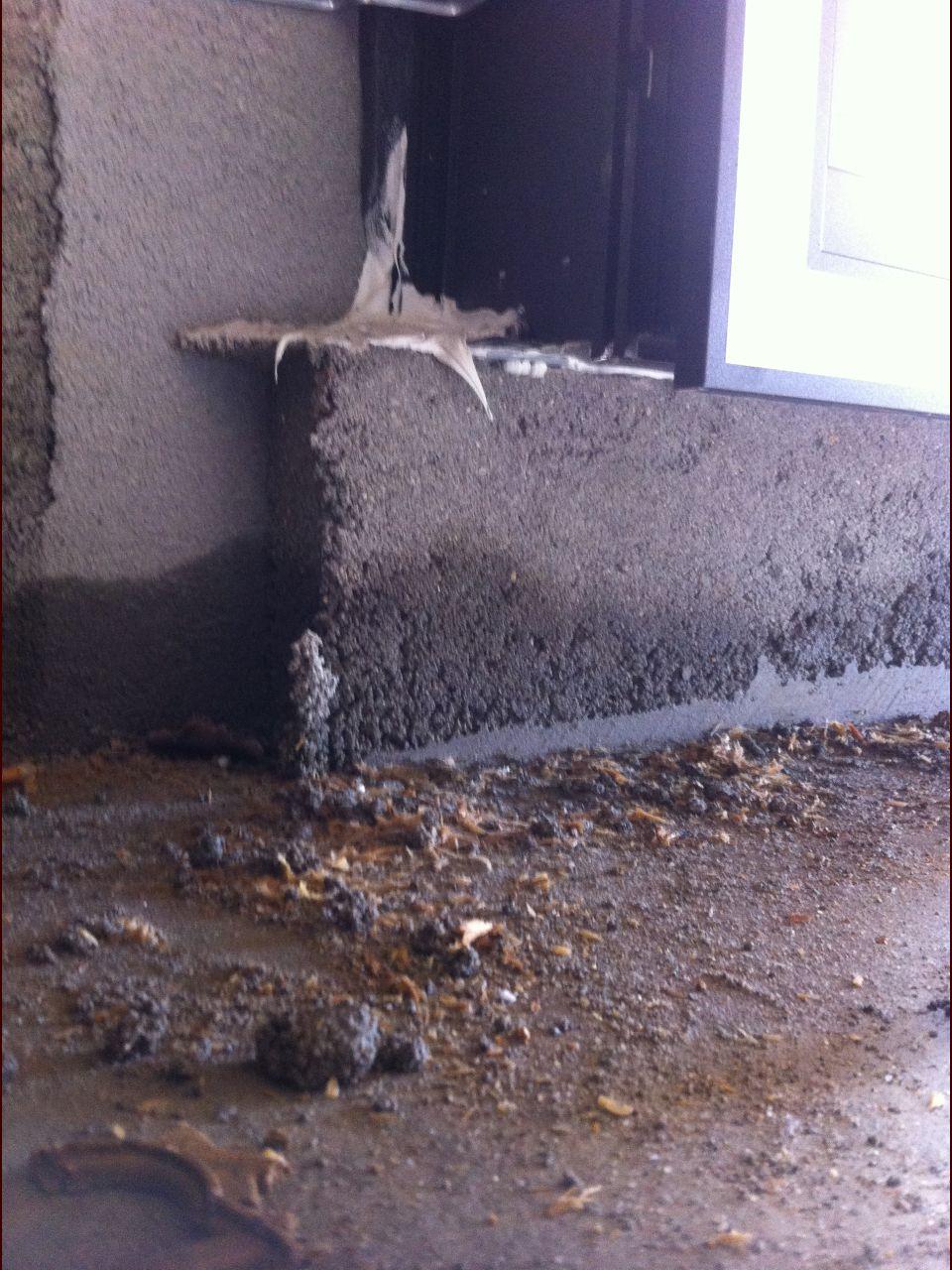 Infiltration d'eau qui semble venir du sol car l'humidité ne touche pas les rebords des menuiseries