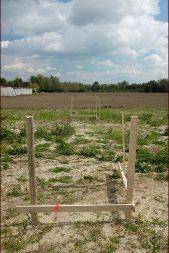Implantation du pavillon sur le terrain terminée