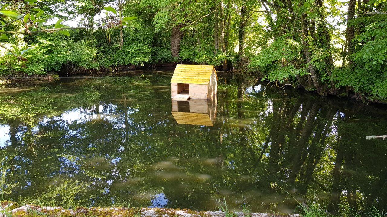 cabane flottante pour des futures canards