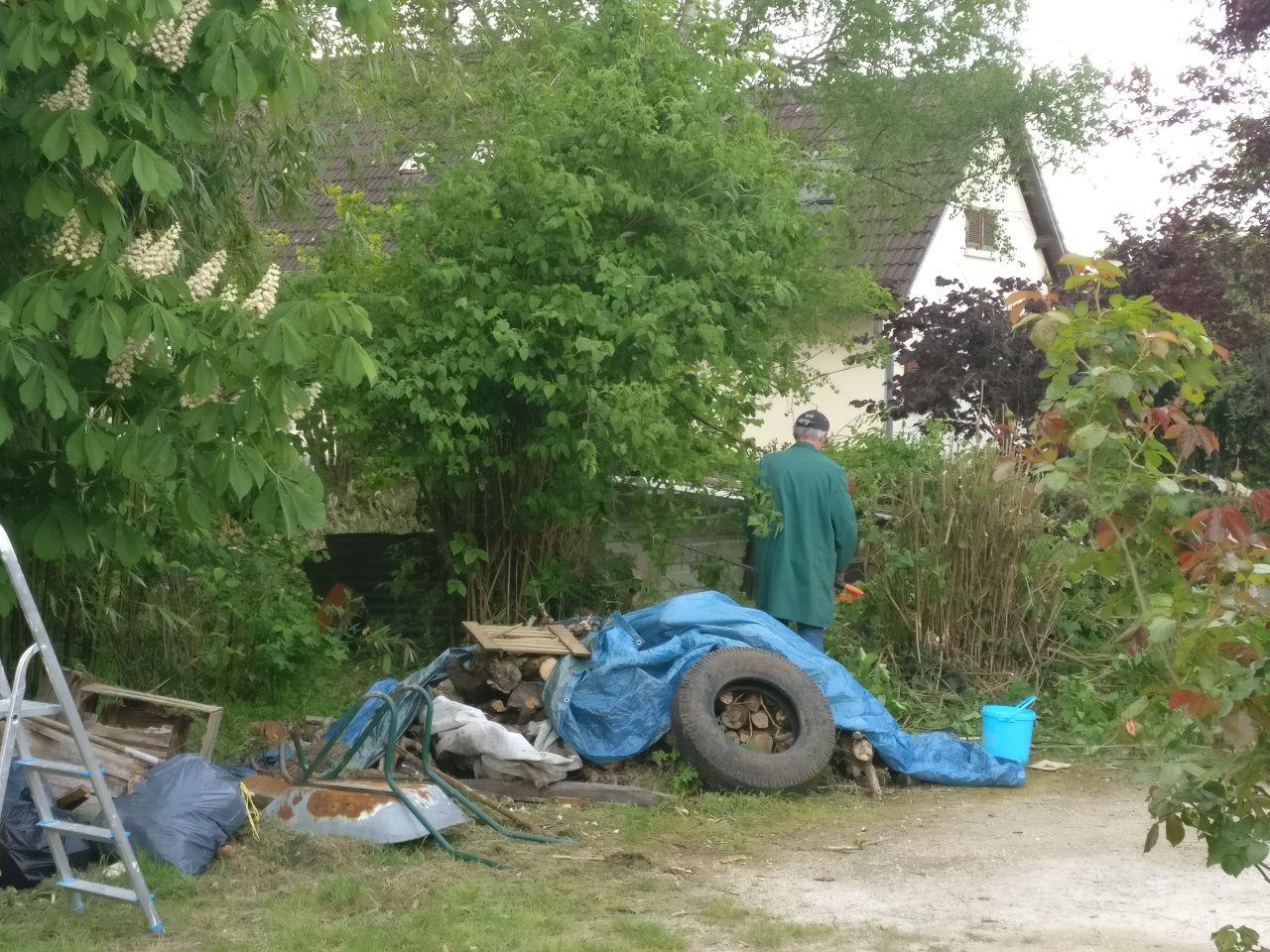 beaucoup de dechet, suppression des seringas en bordure de terrain (dommage cela sent tellement bon) pour commencer à prépare le terrain pour le garage