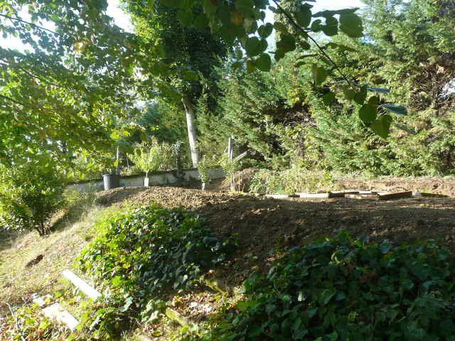 Partie haute du jardin réorganisée