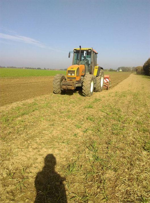 Semis du raygrass et trèfles