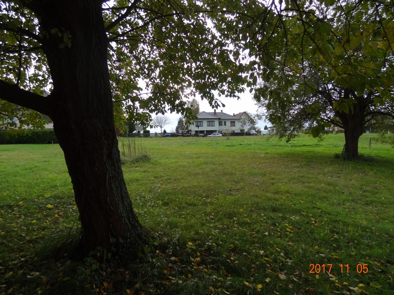 Photo du terrain vue de l'entrée du terrain