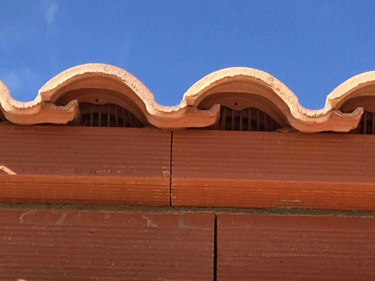Protection de la toiture grille contre les oiseaux