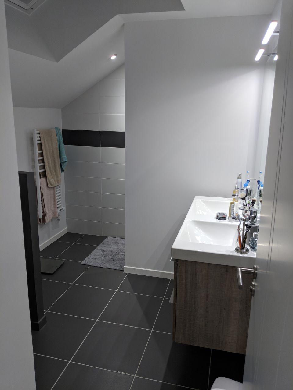 A gauche derrière le mur les WCs, au fond la douche et a droite la double vasque