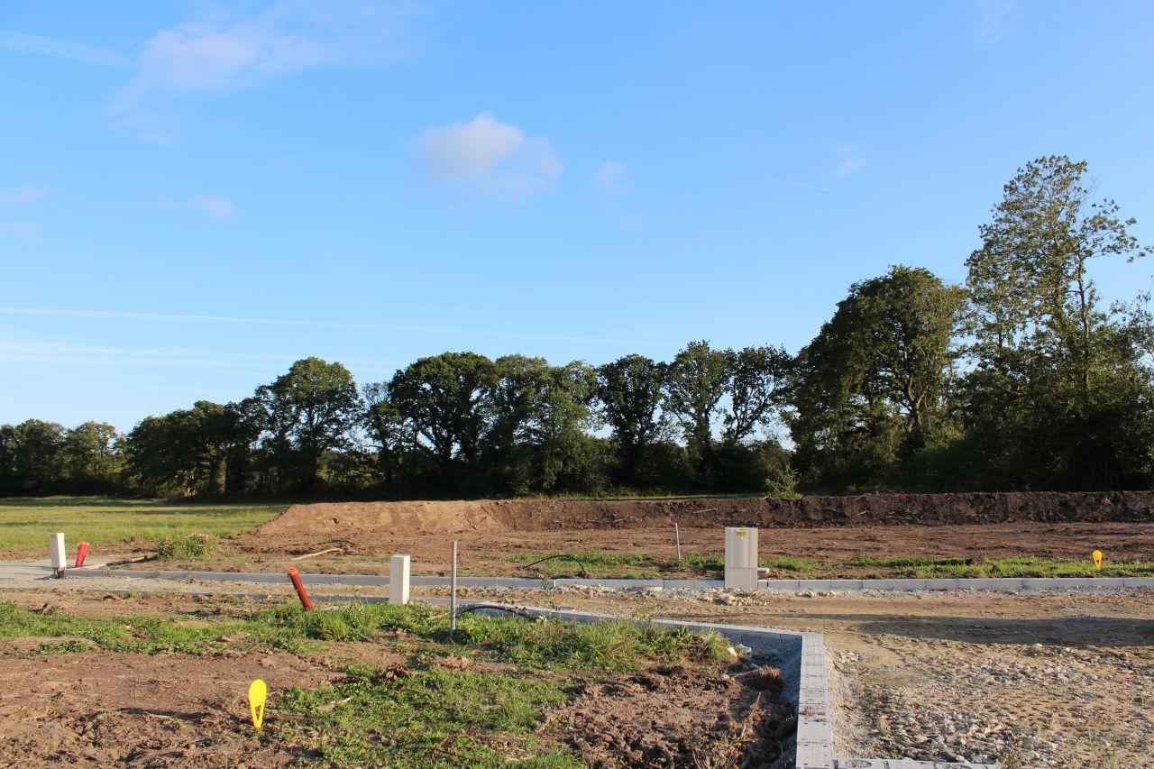 Notre terrain reprend forme: terre étalée et talus gréé.
