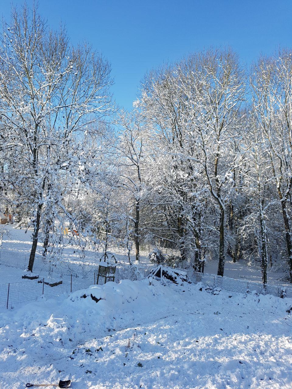Première neige à la maison