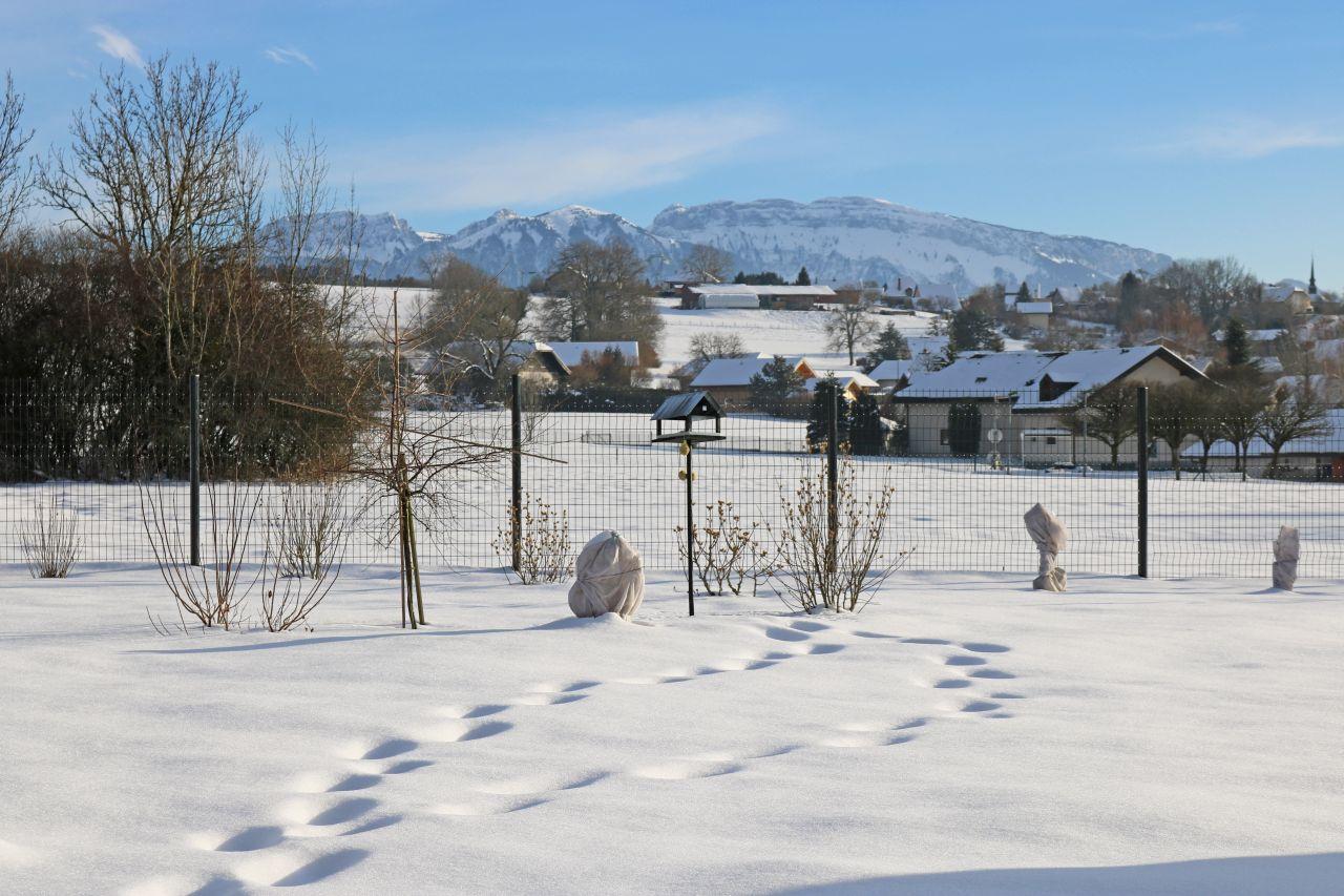 3 mars, la neige fond, enfin !