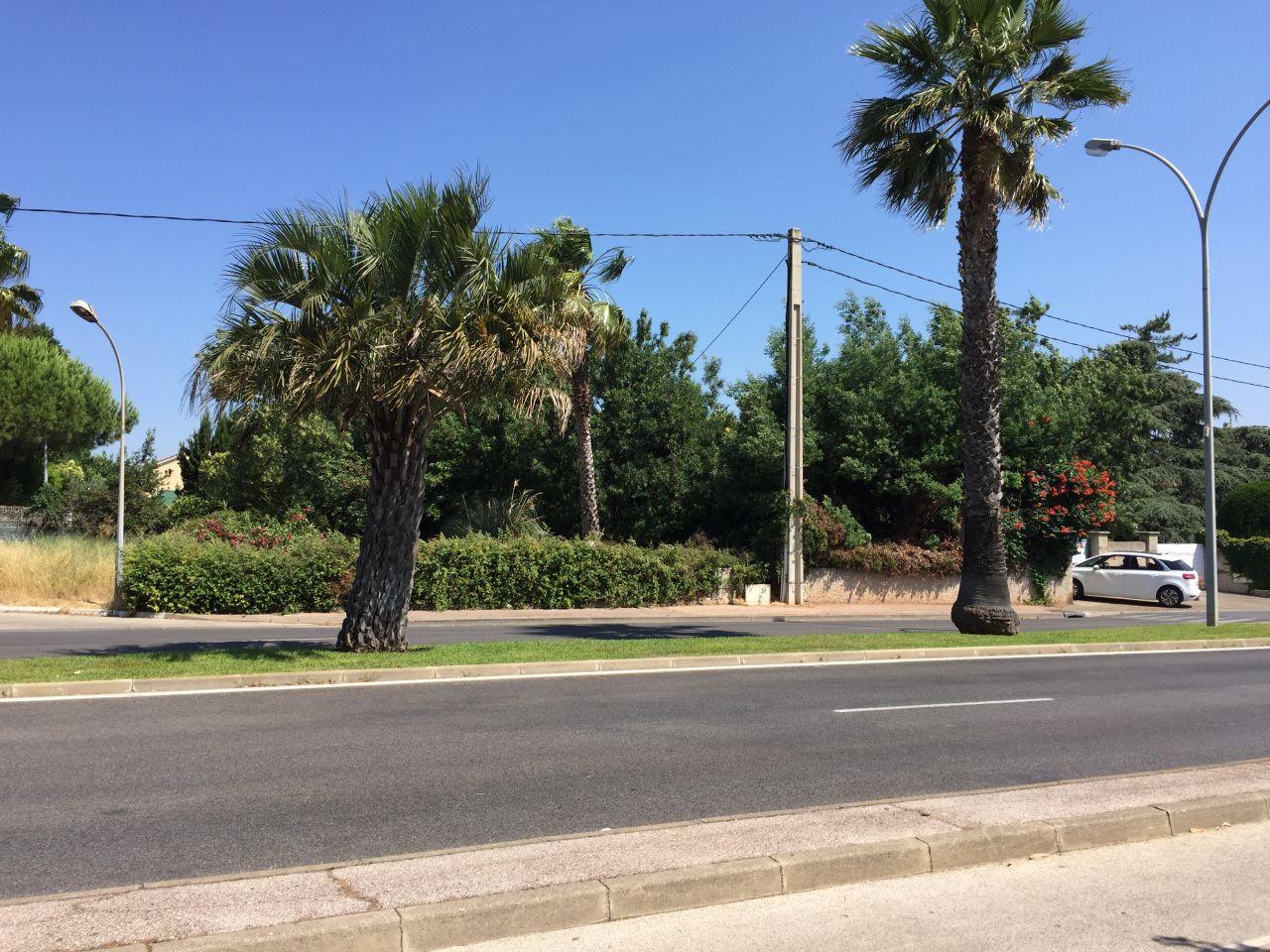 Vue du terrain depuis la route (caché derrière les arbres), le portail est devant la voiture blanche à droite de la photo.