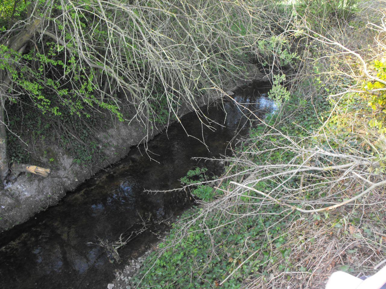 Cours d'eau qui fait office de limite de propriété