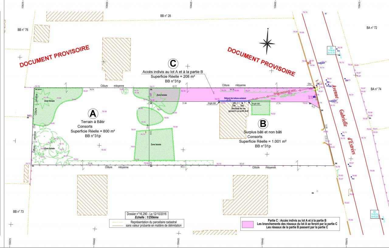 Plan du terrain géomètre