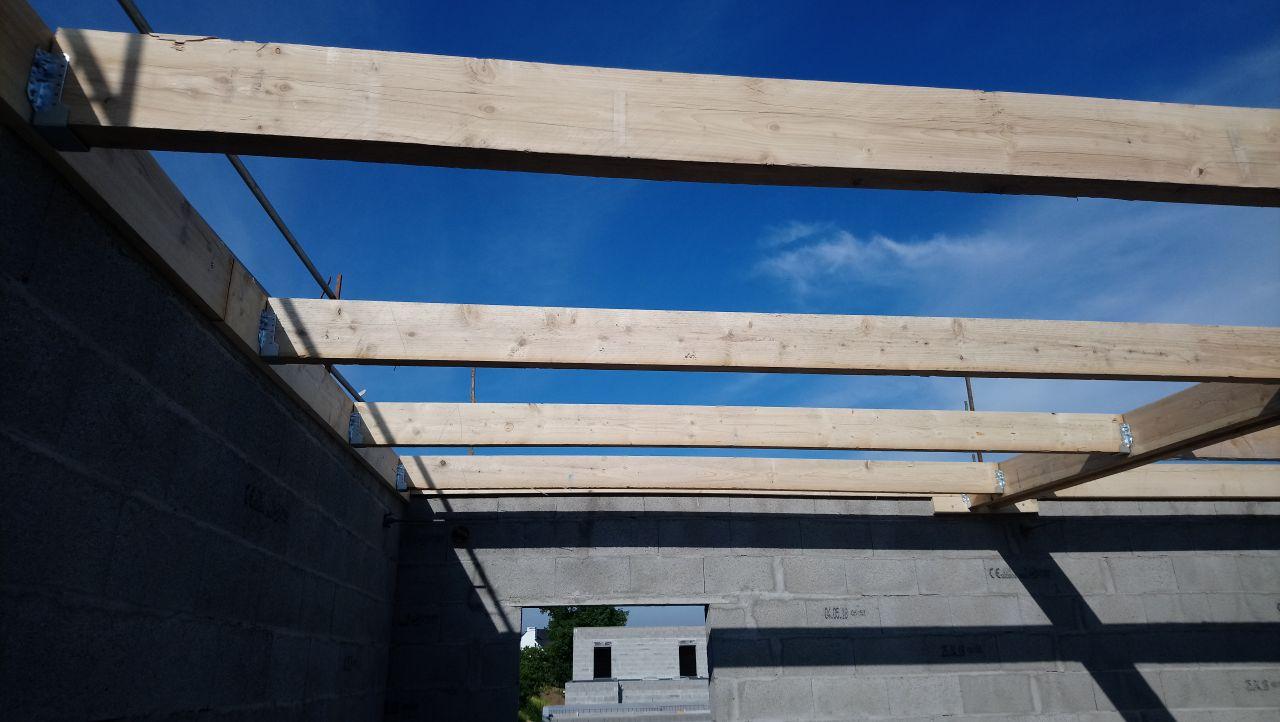 charpente toit monopente