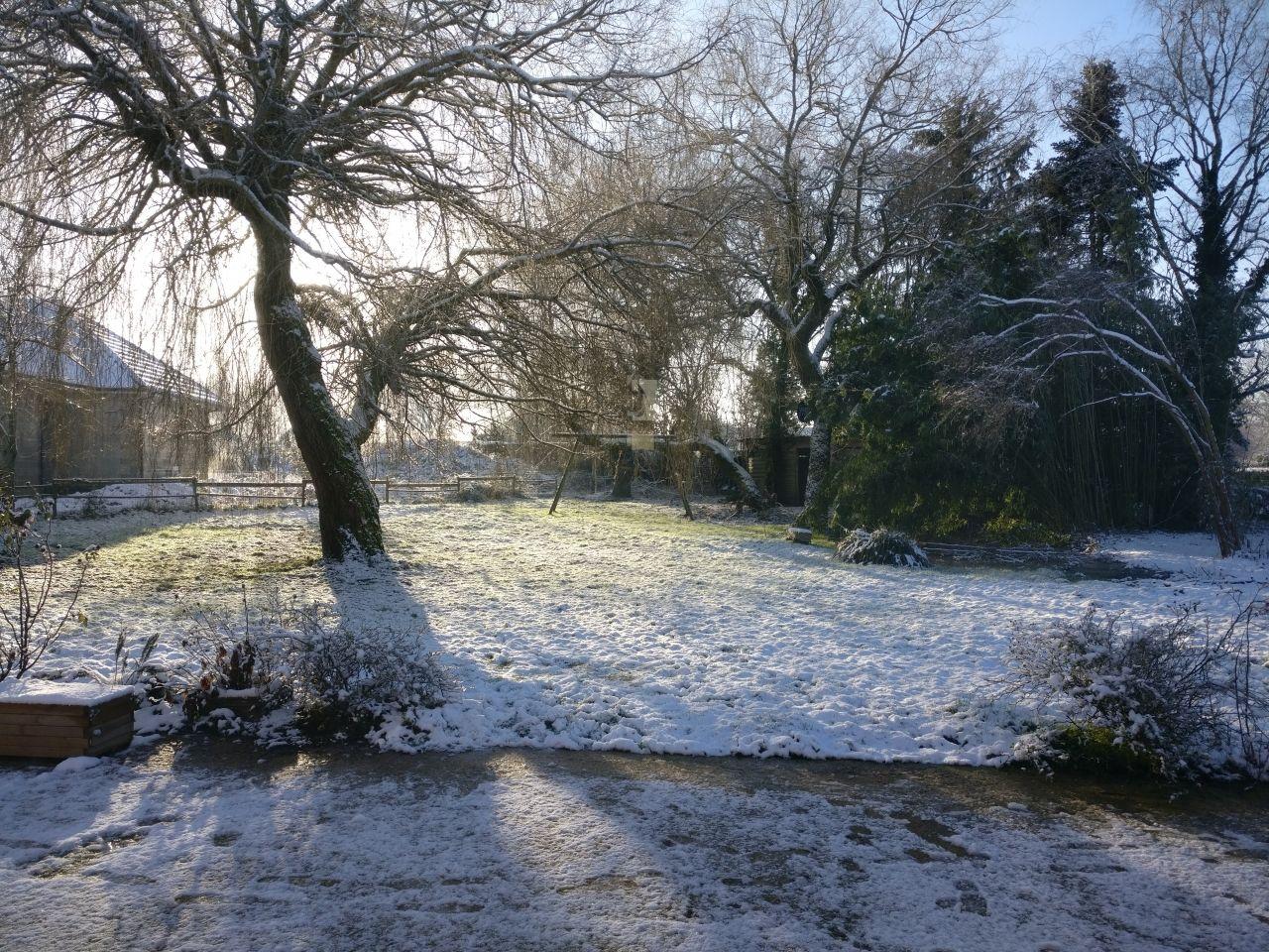 juste avant la neige !