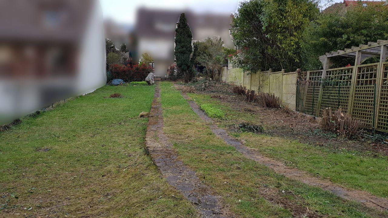 Photo d'une partie du terrain une fois les arbres enlevés. La maison doit se trouver au fond.