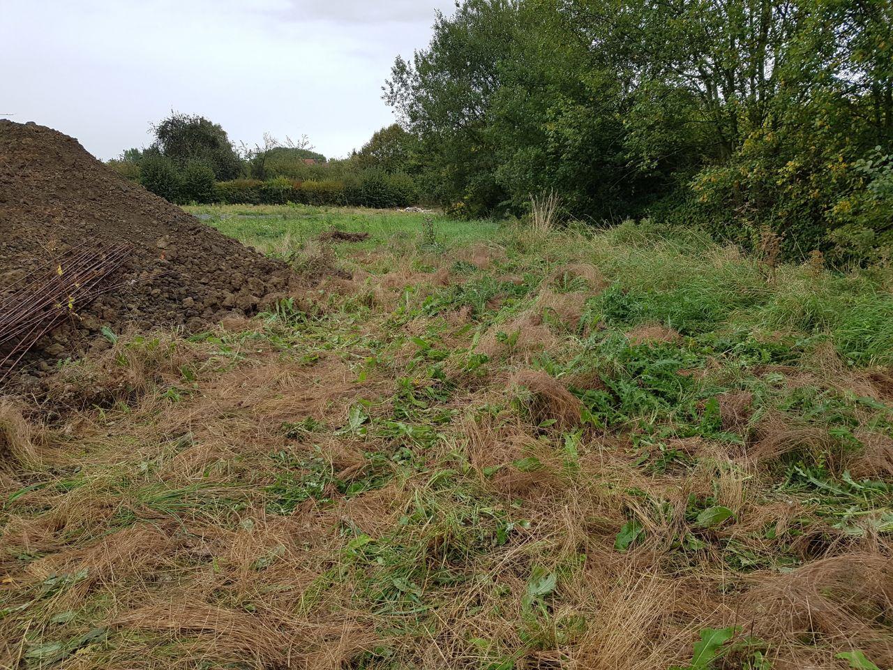 fond du terrain après arrachage à la main des mauvaises herbes, sacré boulot !!