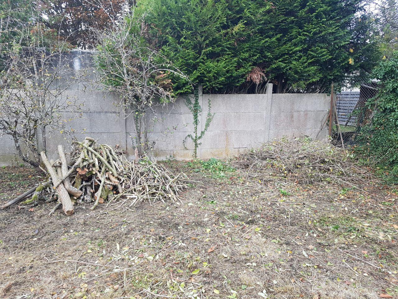 Nettoyage du terrain, tas de branches