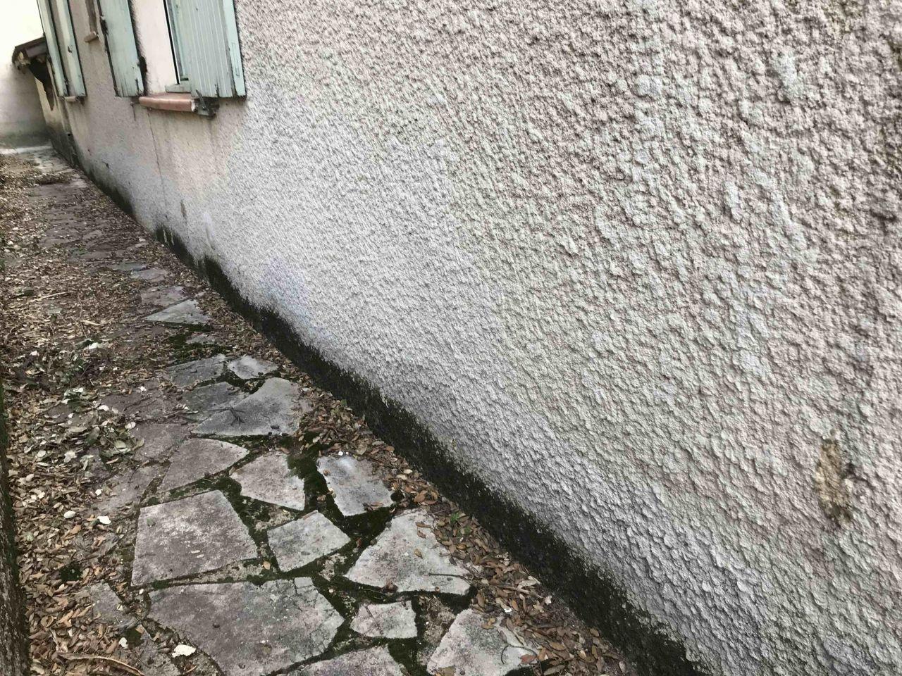 muret , terrasse et mur nord