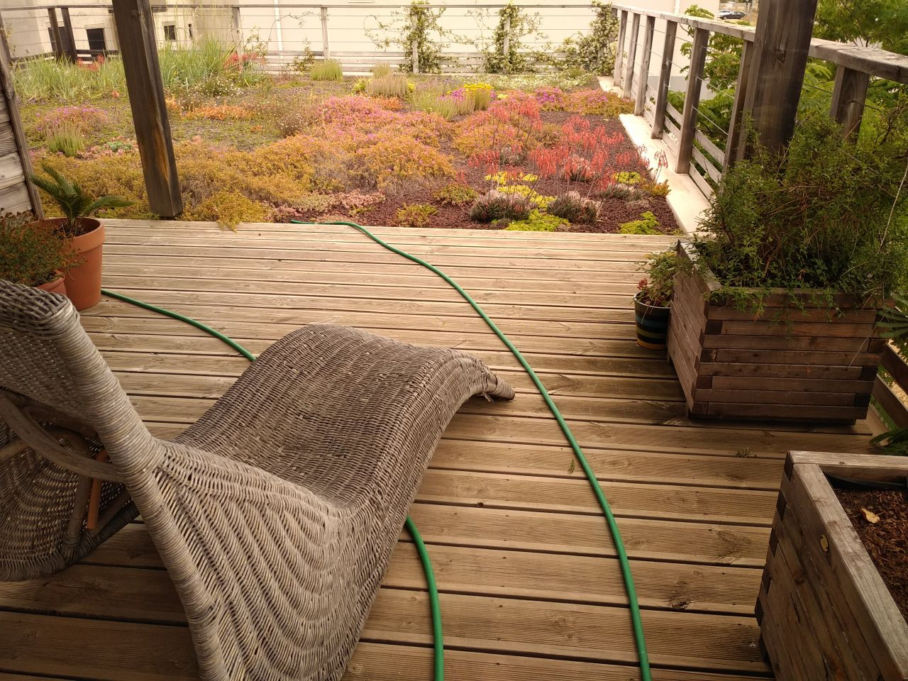 Vu de jardin de toit