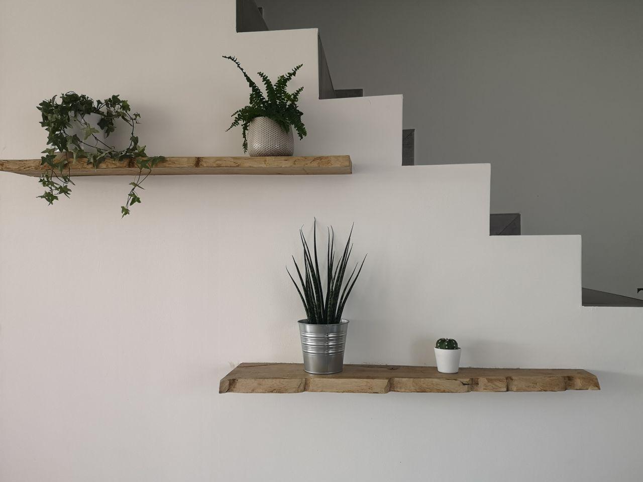 J'aime les plantes ça commence à être la folie depuis que j'ai commencé la déco :)  Déco sous escalier, je veux du simple minimaliste et du naturel