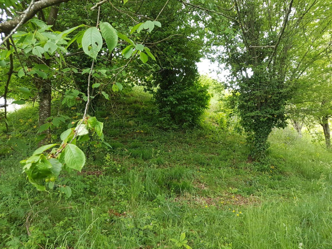 La fameuse colline plantée au milieu du terrain!