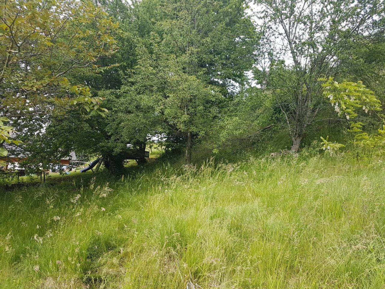 Une autre partie du terrain avec la colline cette fois à droite au fond.